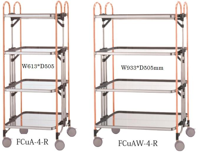 """""""FCuAM-4-R"""" variations"""